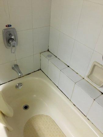 Guomai Hotel: photo1.jpg