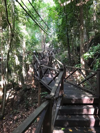 Bagus Place Retreat: Jungle trekking with friends