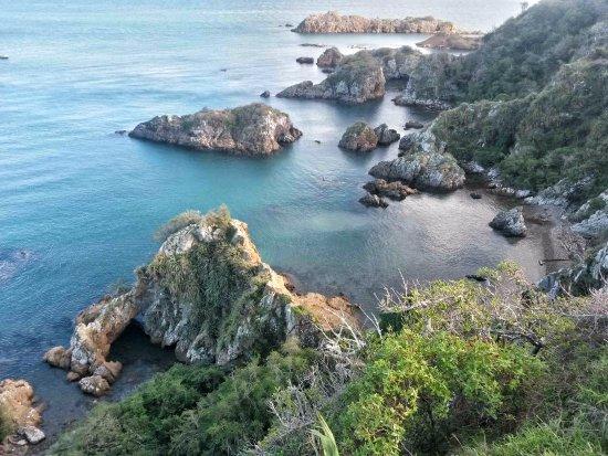 Matiu / Somes Island: One of the many beautiful spots on the island.