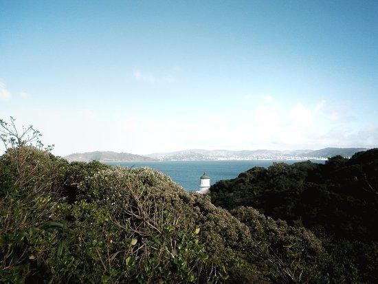 Matiu / Somes Island: The operating lighthouse on the island.