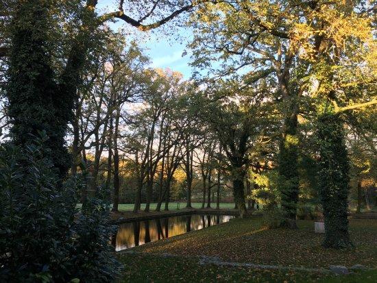 Mellenthin, เยอรมนี: photo4.jpg