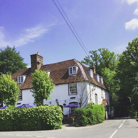 Betchworth, UK: Our beautiful pub in the summer