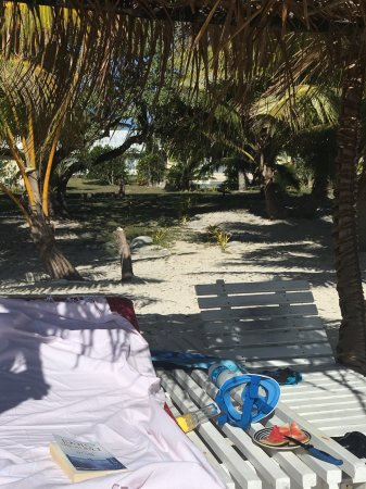 Foui, Tonga: My favourite spot to relax and read on the beach