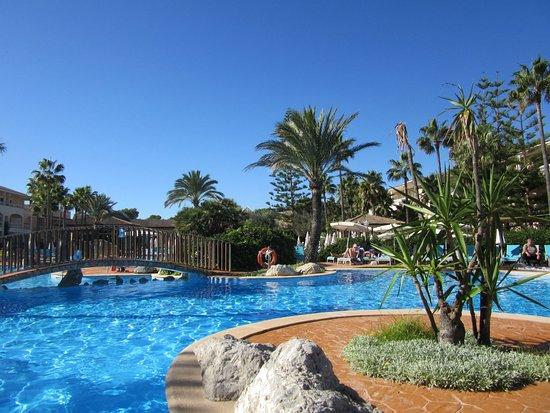 Una parte de la piscina bild fr n playa garden selection for Partes de una piscina