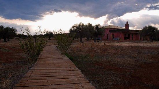 Foto de Eumelia Organic Agrotourism Farm & Guesthouse