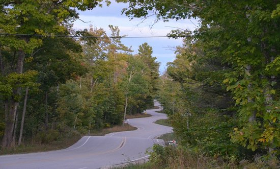 The Shoreline: Windy road