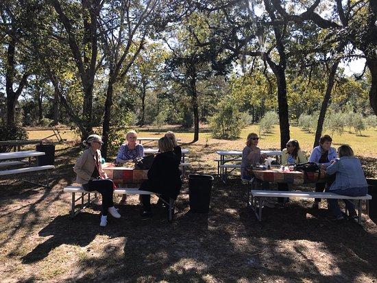 Brooksville, FL: Enjoying an Olive Oil tasting & tea