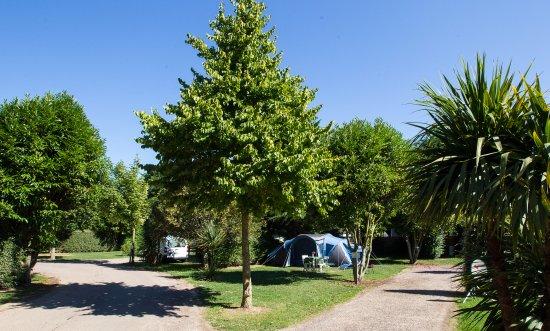 Camping Sandaya la Côte de Nacre : Emplacement