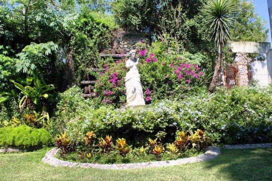 Ciudad Victoria, México: Disfruta de hermosas areas verdes!