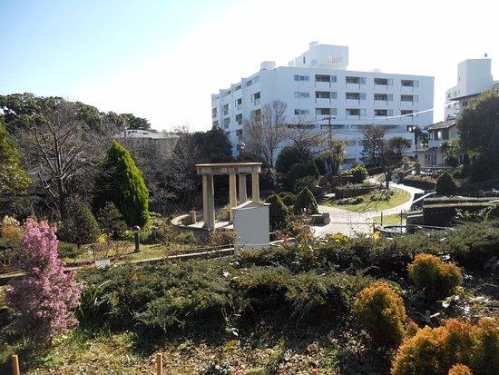 Bluff 99 Garden