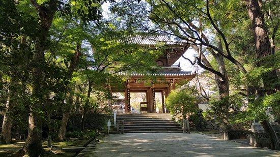 Jokamachi Chofu