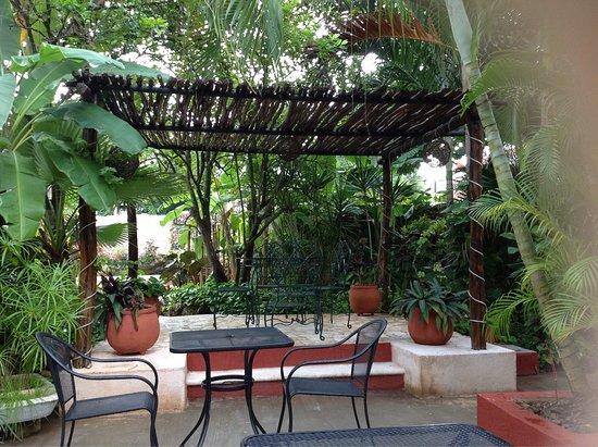 Casa Tía Micha: photo0.jpg