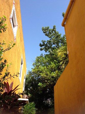 Casa Tia Micha: photo2.jpg