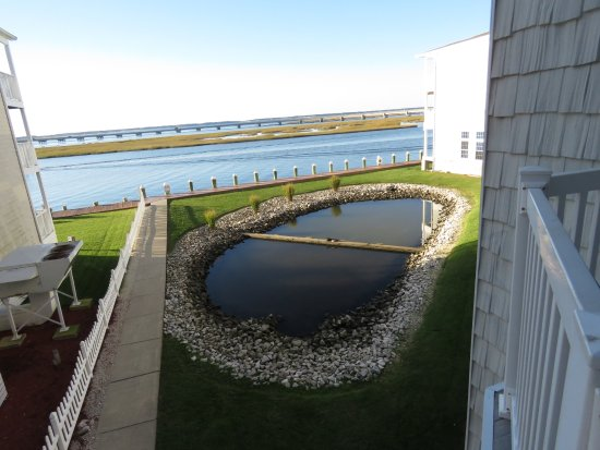 Comfort Suites Chincoteague: View from the room.