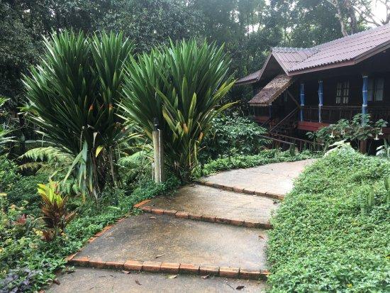 Paksong, Laos: room