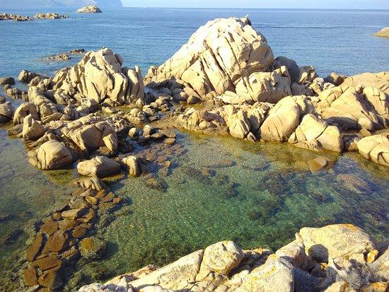 Murta Maria, Italy: Con amici a goderci il mare!