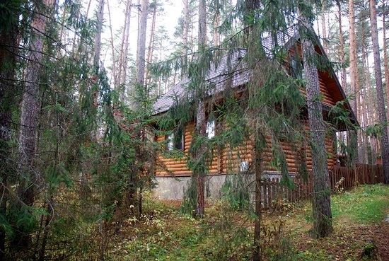Kalininsky District Photo