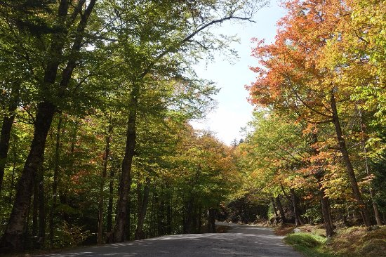 Gorham, NH: Beautiful drive to the top