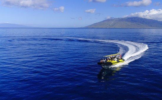 毛伊岛浮潜之旅