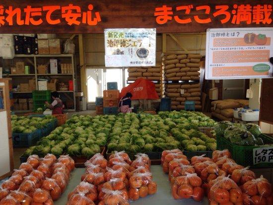 Mori-machi, Japan: 鈴木農園