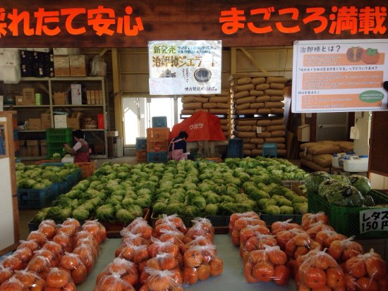 Suzuki Farm