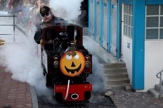 Le Bouveret, Szwajcaria: Joker on steam train