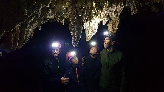 Te Kuiti, Nouvelle-Zélande : Glowing Adventures - Private tour
