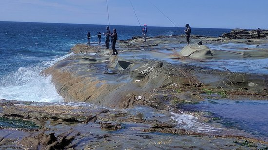 Avoca Beach Australia Rock Fishing