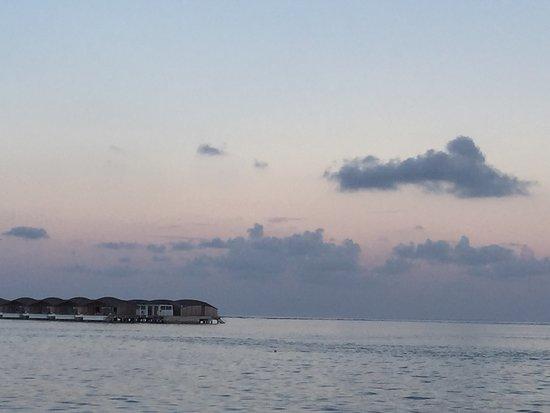 Lohifushi Island: photo5.jpg