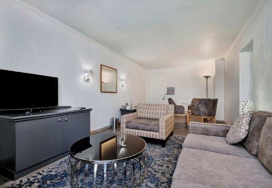 โรงแรมโปรที มิดแรนด์: Luxury Suite - Living Area