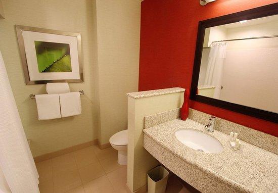 Oneonta, NY: Guest Bathroom