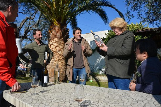 French Riviera Wine Tasting Tour and...