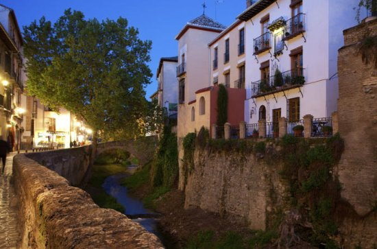 Granada Walking Tour: Albaicin and...