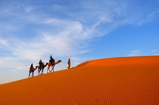 7 Day guided Casablanca tour to ...