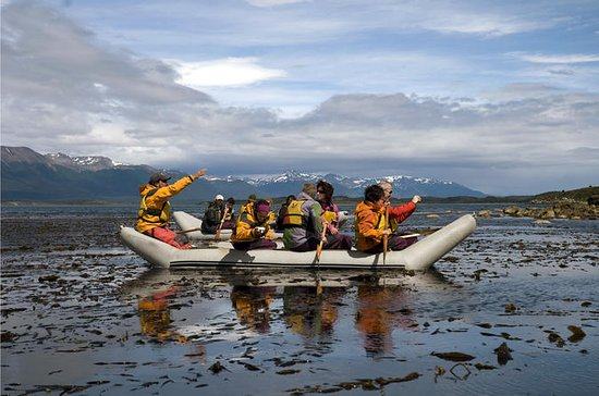 Full-Day Gable Island Eco-Adventure...
