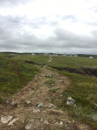 Elliston, Kanada: From puffin site looking back to the road
