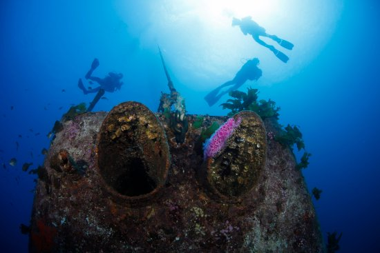 Paihia, Nowa Zelandia: Divers hanging out above the HMNZS Canterbury wreck.
