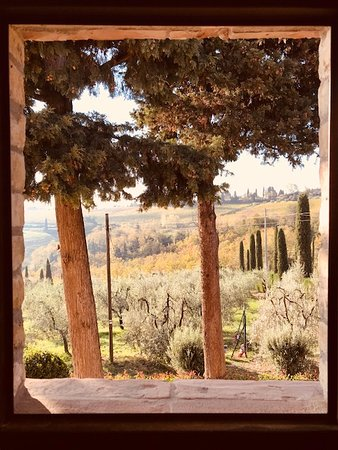 Il Casale del Cotone: Our lovely view