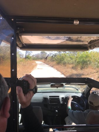 Kurt Safari - Day Tours 사진