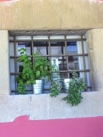 Pelago, إيطاليا: photo3.jpg