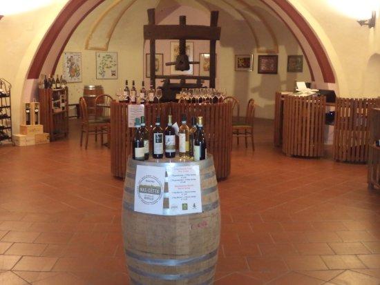 Bottega del Vino