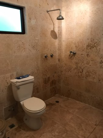 Hotel Palma Royale: Toilet and showerhead