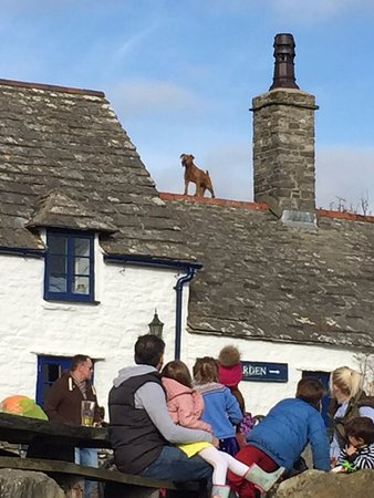 Worth Matravers, UK: Its just a dog on the roof!!