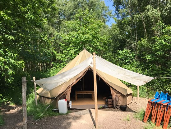 Eco Camp UK - Beech Estate Woodland Campsite: Bell tents are tucked among the trees at Beech Estate Woodland