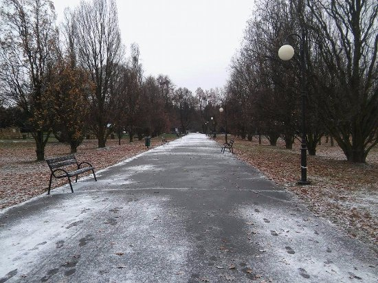 Park Cytadela: Beautiful place also in the winter