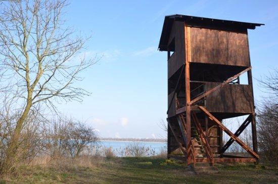 Europäisches Vogelreservat Heerter See