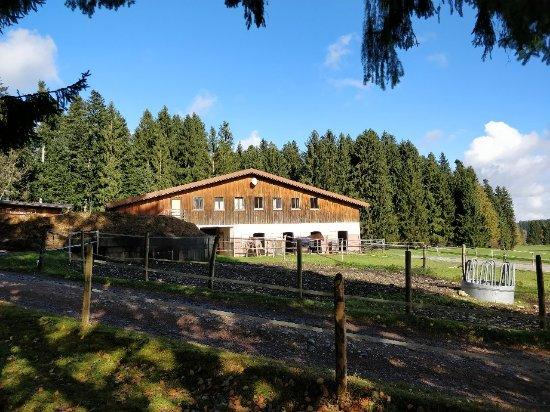 Oberreute, Germany: Landgut Ihlingshof