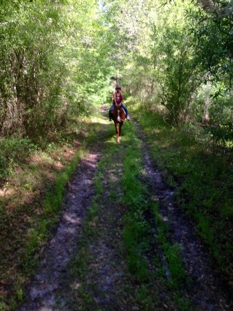 Oakridge Trailhead is just 25 minutes from San Antonio in Hillsborough County.
