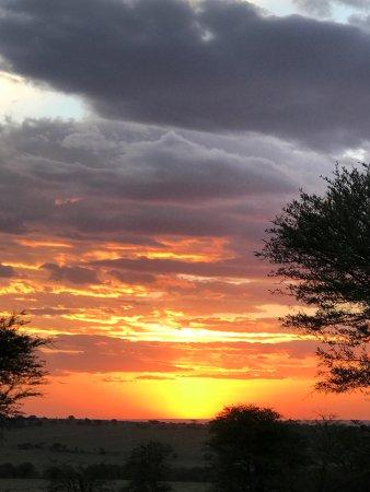 Ang'ata Migration Ndutu Camp: photo4.jpg