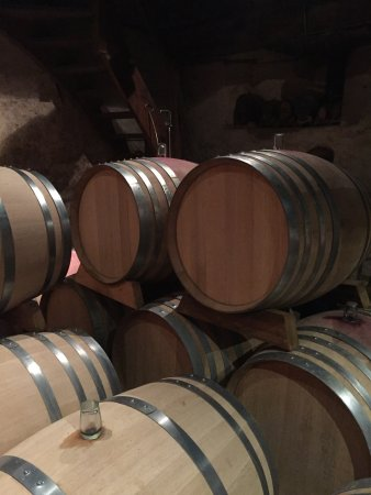 Mittelbergheim, France: Wonderful afternoon trip to Domain Albert Seltz where Albert gave a tour, wine tasting and an ed
